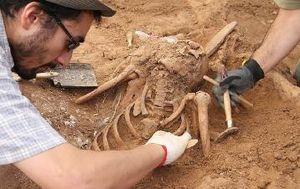 exhumacion bierzo